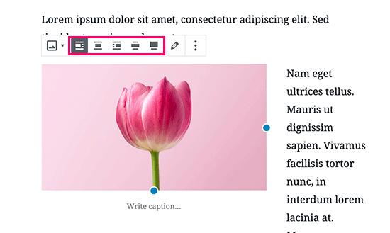 Кнопки выравнивания изображения в редакторе сообщений WordPress