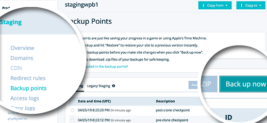 Create a backup point for your staging website