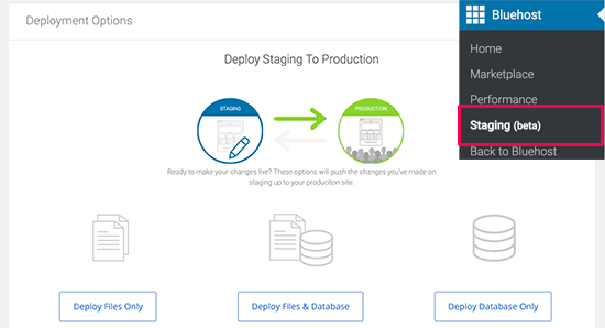 Deploy staging to live website on Bluehost