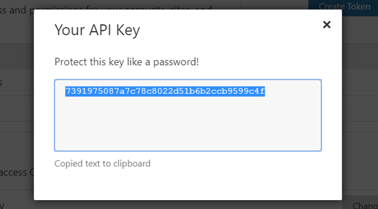 Скопируйте Cloudflare API Key