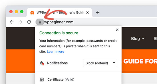 Padlock icon indicating a website using SSL HTTPs protocol