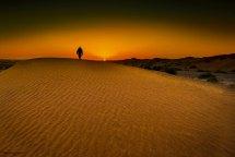 Discover Golden Sand In Uae Desert Al Ain