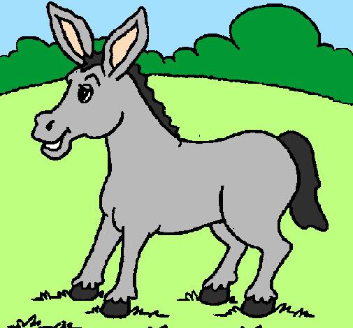 Risultati immagini per disegno asino