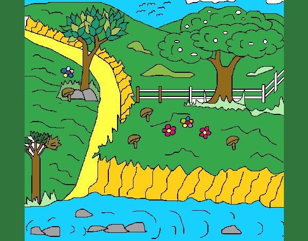 Disegno Paesaggio rurale colorato da Utente non registrato