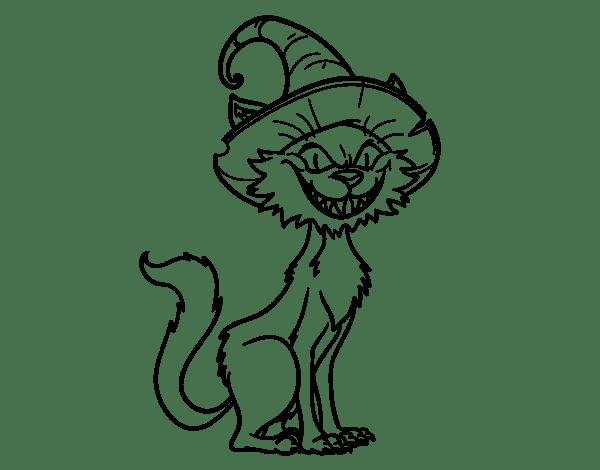 cat 5 color code