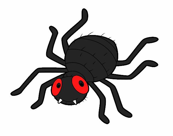 Resultado de imagem para aranha desenho