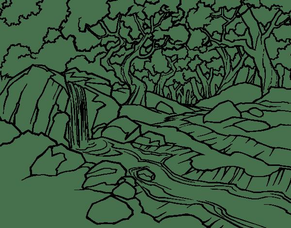 Coloriage de Paysage de forêt avec une rivière pour