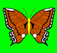 Dibujo de Mariposa pintado por Hanon en Dibujos.net el da