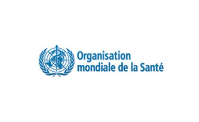 Organisation Mondiale De La Santé Allaitement