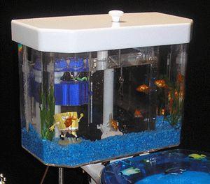 Fish N Flush Toilet Tank Aquarium  Snob Essentials
