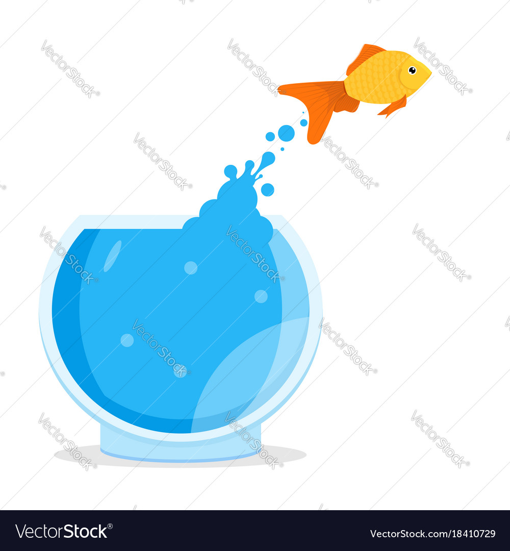 hight resolution of diagram of the goldfish