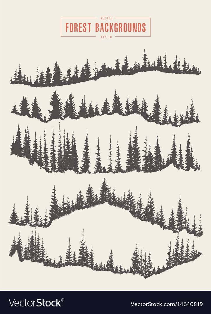 Forest Background Drawing : forest, background, drawing, Forest, Background, Drawn, Sketch, Royalty, Vector