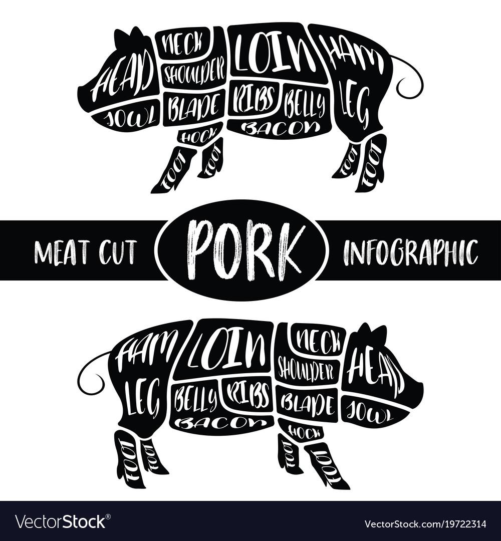medium resolution of pig diagram label