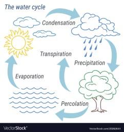 water cycle line vector image [ 1000 x 1080 Pixel ]