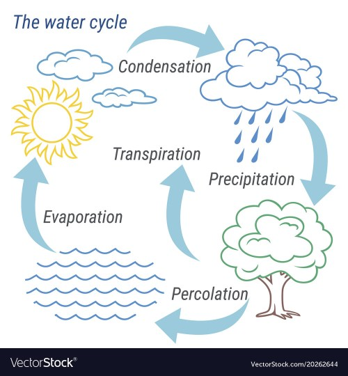 small resolution of water cycle line vector image