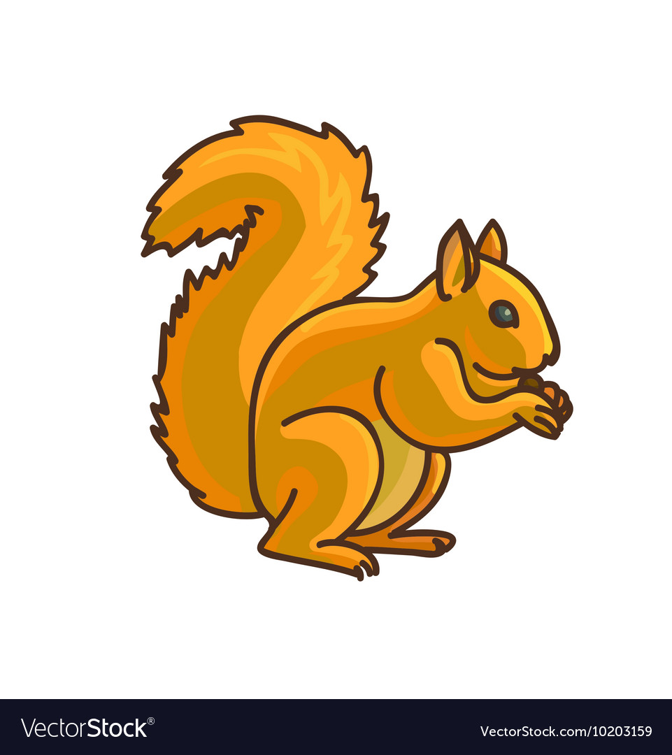 red squirrel cartoon drawing