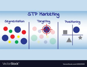 Stp marketing diagram  process Royalty Free Vector Image