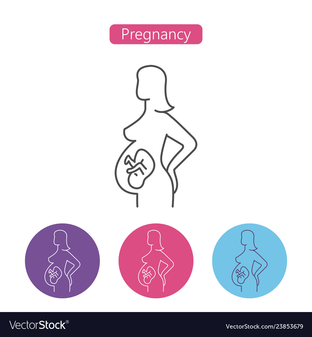 hight resolution of pregnant woman icon vector image