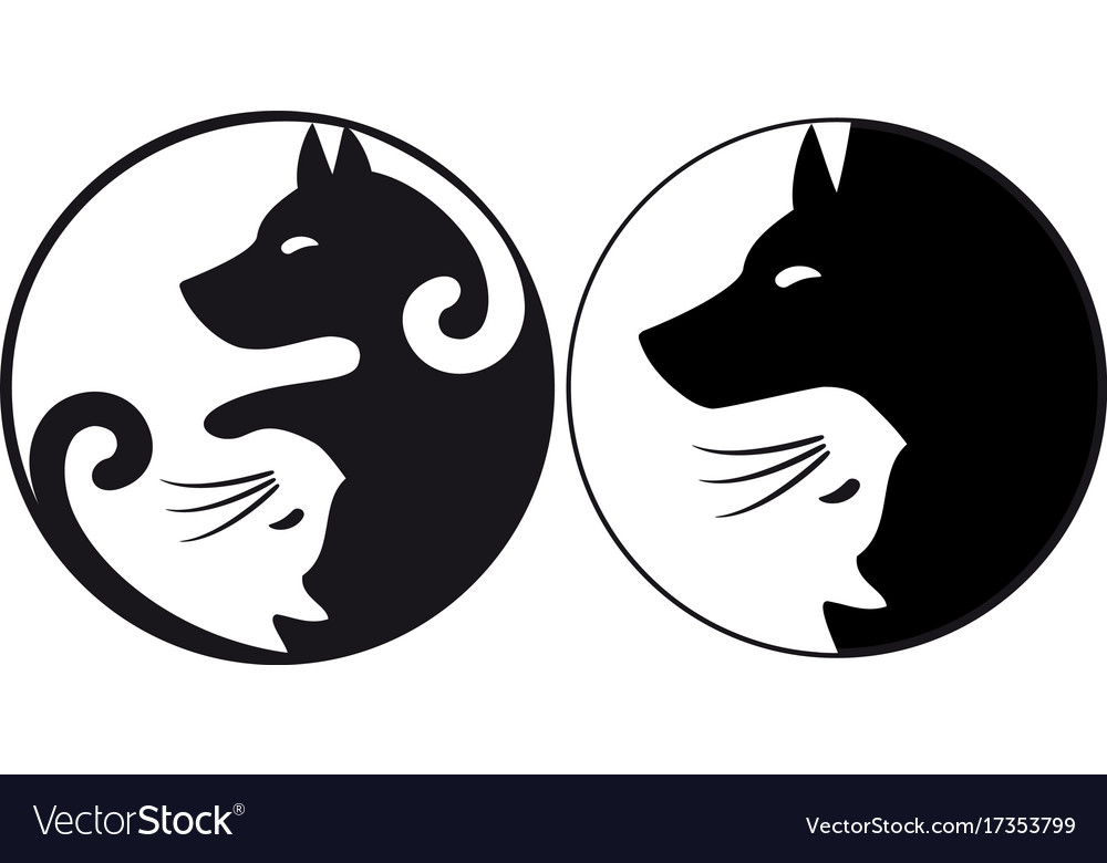 yin yang symbol cat