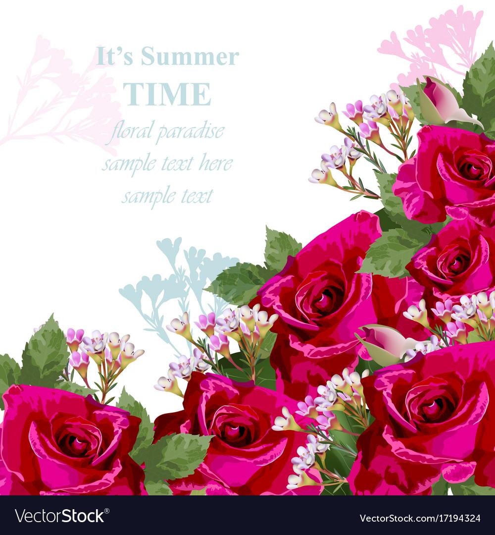 rose flower greetings vaca
