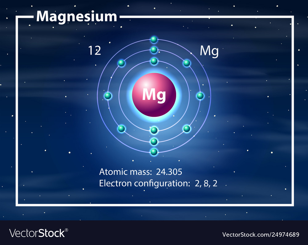 hight resolution of magnesium atom diagram concept vector image