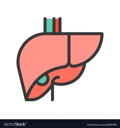 liver simple filled outline icon medical and vector image rh vectorstock com liver diagram labeled stomach [ 1000 x 1080 Pixel ]