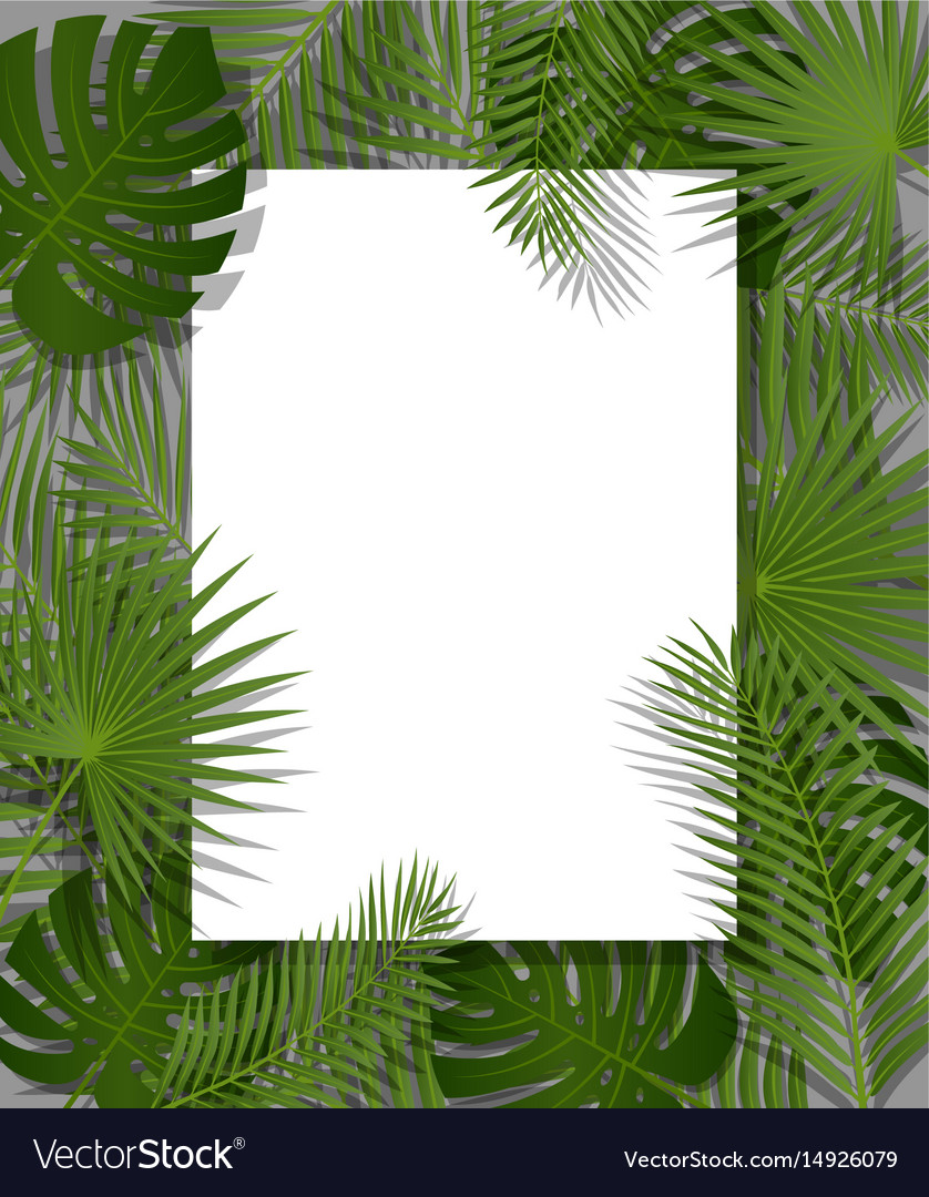 Tropical Flora Summer Mood Vector illustration Background