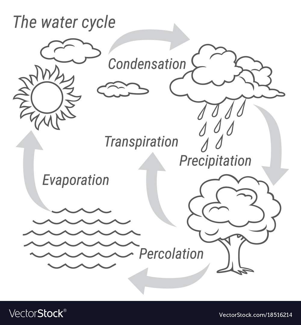medium resolution of water cycle black and white vector image
