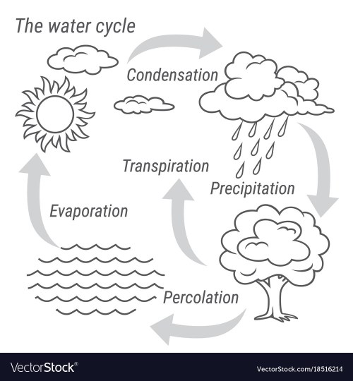 small resolution of water cycle black and white vector image