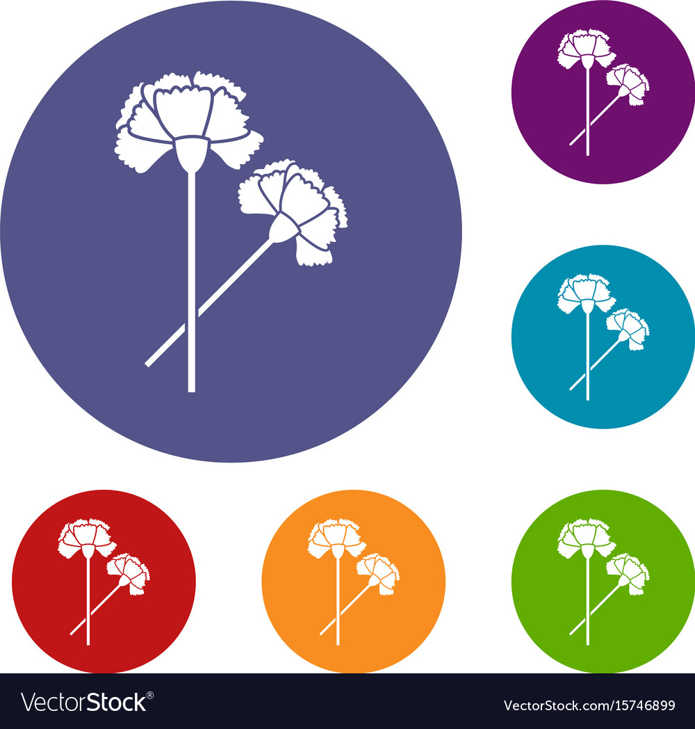 medium resolution of carnation icons set vector image