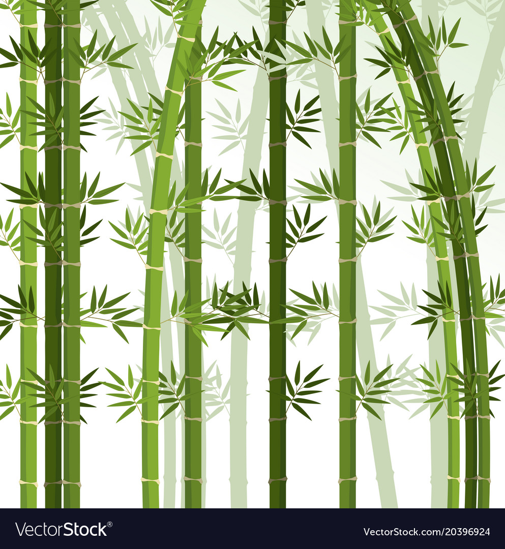background design with bamboo