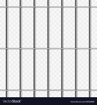 Prison bars on transparent Royalty Free Vector Image