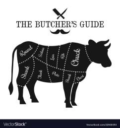 cattle bone diagram [ 1000 x 1080 Pixel ]