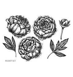Garden Clipart Black and White Vector Images over 930