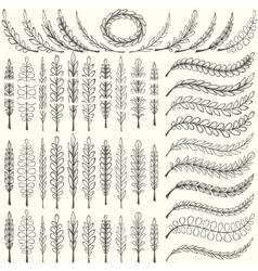 Simple Leaf Border Branch Vector Images over 1 100