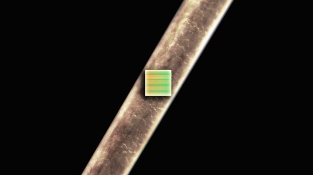 A Cortex M0 on a single strand of human hair