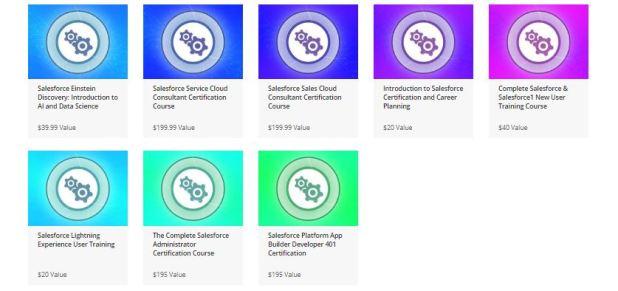 Salesforce Certification Training Bundle
