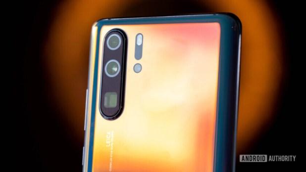 Huawei P30 Pro cameras macro back (57 of 60)