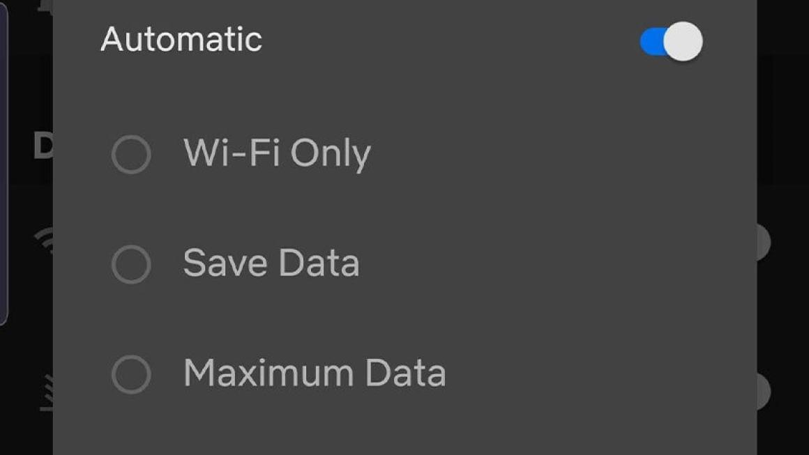 Снимок экрана с функциями сохранения данных Netflix