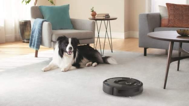 best robot vacumm cleaners - iRobot Roomba Vacuum Dog in Livingroom