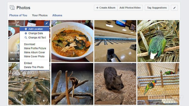 A screenshot of Facebook's photo deletion