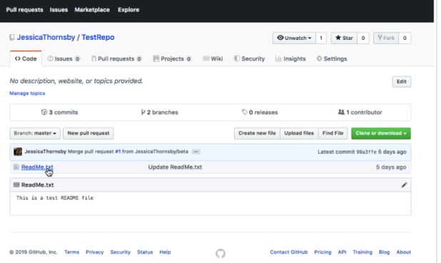 All files you push to GitHub, will appear in your remote repository