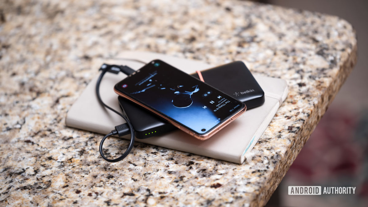 Сотрудники АА выбирают аккумуляторную батарею Lily Katz Belkin 10000