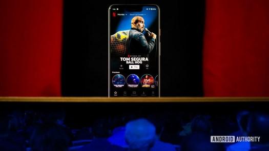 Netflix video streaming service