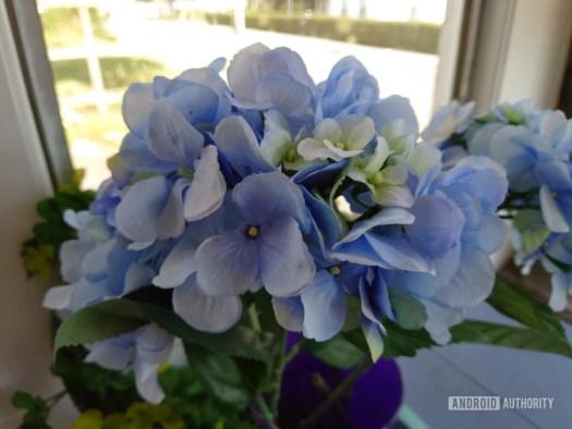 Sony Xperia 5 II Flower Pro Shot