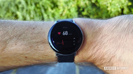 Zepp E Circle Review Resting Heart Rate