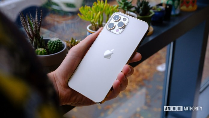 iPhone 12 Pro Max back in hand 1