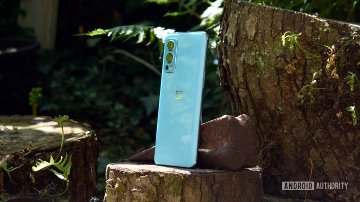 OnePlus Nord 2 5G back side-on standing on tree stump
