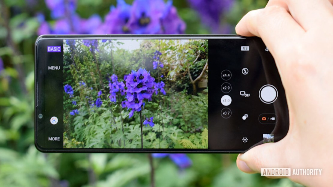 The Sony Xperia 1 III camera app taking a photo of some blue flowers.