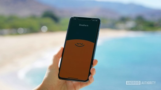 An iPhone 11 displays the Breath in, Breath out welcome sequence of the app Headspace.